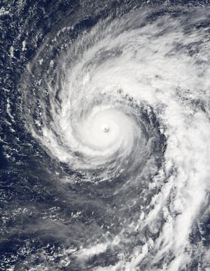 Typhoon Podul